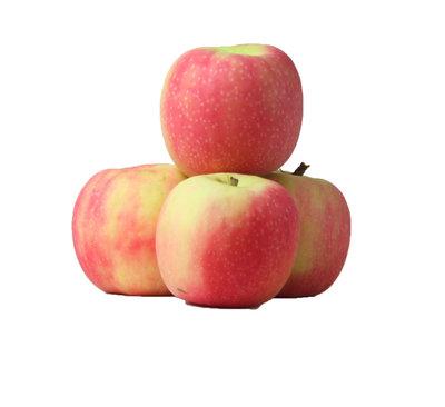 appel cripps pink - kg