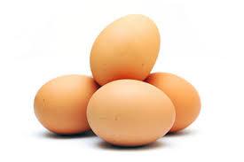 biologische eieren - 10 stuks