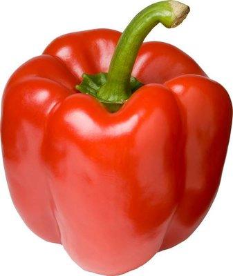 paprika rood - stuk