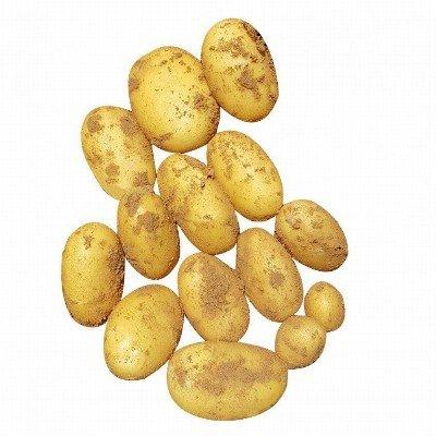 aardappelen frites (velhorst) - lady jane - 1 kg