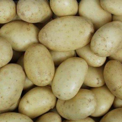 aardappelen vastkokend (velhorst) - cammeo - 1 kg