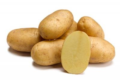 aardappelen vastkokend twinner - velhorst - kg