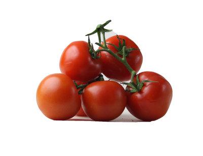 ronde tomaten - 't paradijs - 500 gram