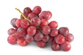 druiven blauw - 't paradijs - 500 gram
